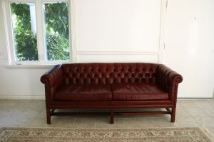Best Leather Furniture Cleaners With Conditioner